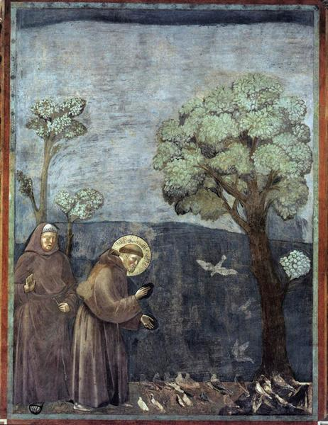St francis preaching to the birds 1299.jpg large